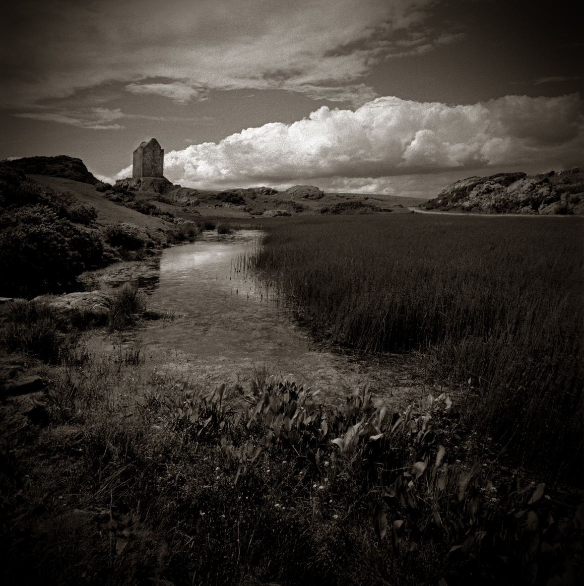Sir Walter Scott's  Smailholm Tower